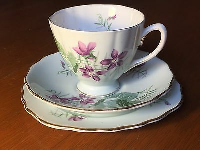 Vintage Cup Saucer And Plate Trio - Colclough Bone China