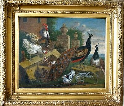 Fine 18Th  Century Exotic Birds In An Arcadian Landscape Oil Painting On Canvas.