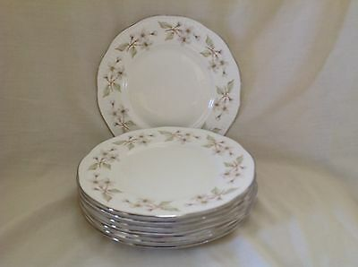"6 X Royal Sutherland 8"" Salad Plates Very Good Used Condition First Quality"
