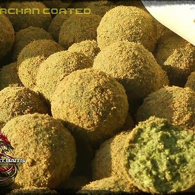 Project Baits Belachan Coated 14 - 20 Mm