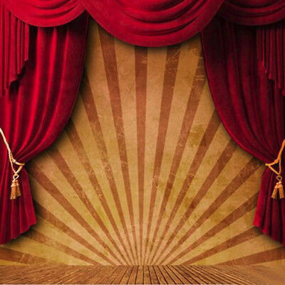 10x10FT Circus Red Curtain Stage Photography Studio Background Backdrop Vinyl US