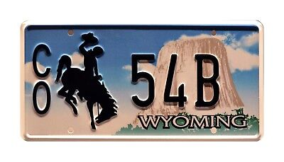 Longmire / Walt's Ford Bronco / CO 54B *STAMPED* Replica Prop License Plate