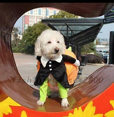 Halloween Costume Pet Dog Clothes Carrying Pumpkin Puppy Apparel Coat Jackets