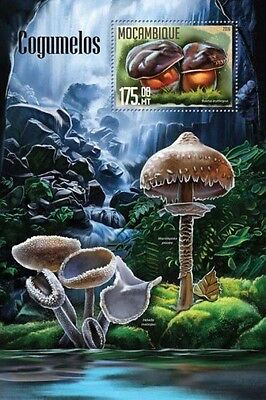 Z08 IMPERFORATED MOZ16201b MOZAMBIQUE 2016 Mushrooms MNH