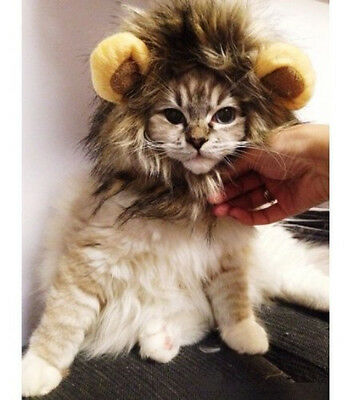 Costume for Halloween or for Fun Pet dog hat pet cat lion wig with small ears