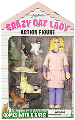 5.25in Vinyl Crazy Cat Lady Woman Action Figure W/ 6 Pets Illustrated Window Box