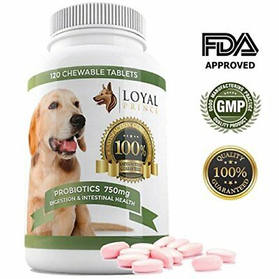 Dog Probiotics Digestive Enzymes for Diarrhea & Yeast Infection
