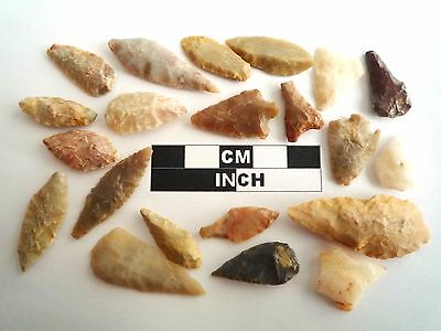 20 x Neolithic Arrowheads - Genuine Saharan Flint Artifacts - 4000BC (0577)