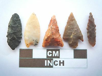 Neolithic Arrowheads x5, High Quality Selection of Styles - 4000BC - (X073)
