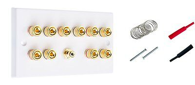 5.1 Surround Sound Speaker Wall Plate with Gold Binding Posts + RCA Socket + +