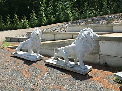 Monumental Hand Carved Solid Marble  Estate Roaring Lions - Jd3