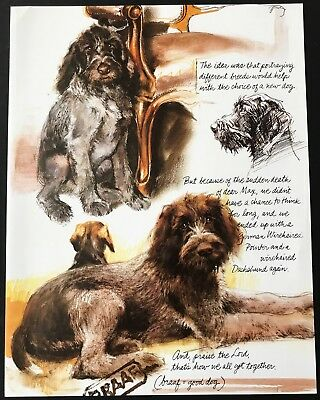 GERMAN WIREHAIRED POINTER DOGS Vintage Full Page Art Print by Rien Poortvliet