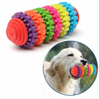 Chien de caoutchouc, dents de chat Dents saines Gingival chewing toys coloré