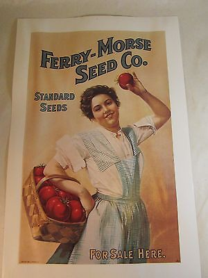 """Vintage Look Ferry-Morse Seed Co Advertising Poster 9x6"""" Girl w Basket Tomatoes"""