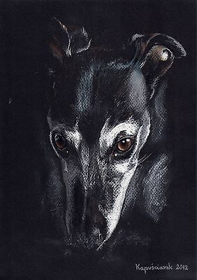 Whippet *  Windhund  ***  Levrier  ****   * Limited  Print  #  226
