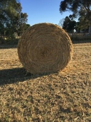 Oaten Hay For Sale!!!