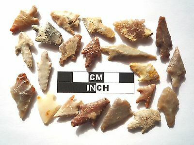20 x Barbed and Tanged Neolithic Arrowheads - 4000BC - (995)