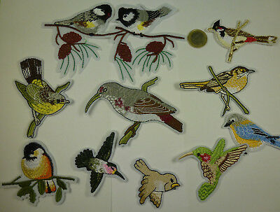 ❤️ Trend Patch Patches Aufnäher Bügelbilder Iron on birds Vogel Vögel - NEU