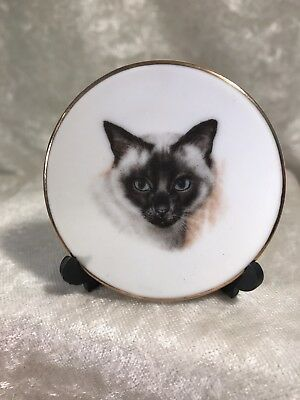 Vintage Miniature Kitty Cat Plate With Stand