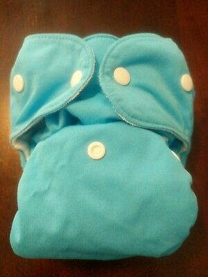 Thirsties Size 2 Duo AIO All In One Cloth Diaper