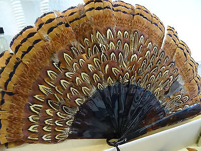 antiker Fächer aus Vogelfeder Burlesque Federfächer 19. antique feather fan 19th