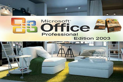 Microsoft Office Professional 2003 (DVD) - 3 Users