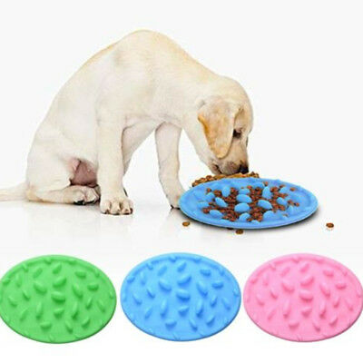 Pet Puppy Dog Cat Slow Feeder Bowl Anti-Choke/Gulp/Bloat Digestion Dish Elegant