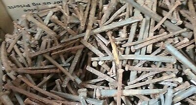 Huge lot of vintage square nails blacksmith carpenter antique