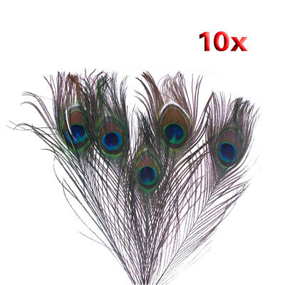 10x( 10pz x Natural Peacock Feathers - colore naturale M6K0