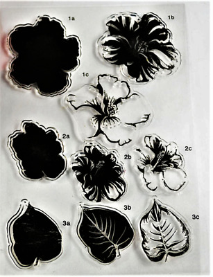 Clear cling stamps for Card making & stamping Unbranded LAYERING HIBISCUS FLOWER