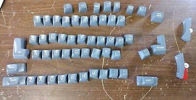 Ibm Selectric Ii Typewriter Keyboard 56 Keys Gray Plastic  Crafting Steampunk