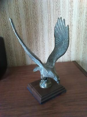 Light Bronze Hawk/Eagle on Mahogany Base