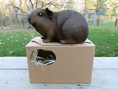 GUINEA PIG FIGURINE 9.25 IN.animal resin box fake straw PET  Dark Brown New