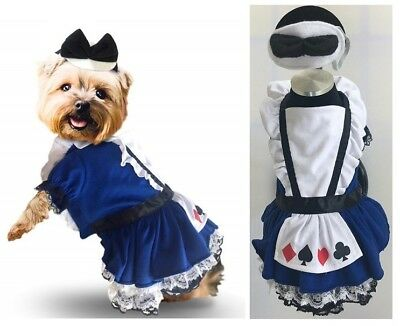 Quality Dog Dress Costume - Wonderland Card Suits Blue Petticoat Lace Alice