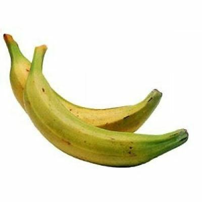 Ripe Plantain (Pack of 6) - Musa paradisiaca - AFRO PLANTAIN
