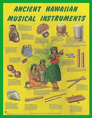 "ANCIENT HAWAIIAN MUSICAL INSTRUMENTS POSTER - 22""x 28"" by Artist Roy Hewetson"