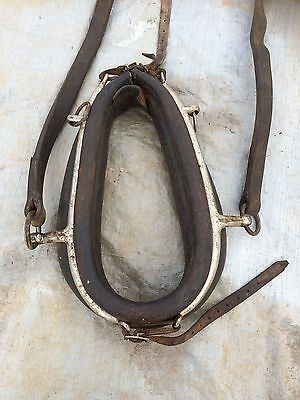 Horse Collar And Traces