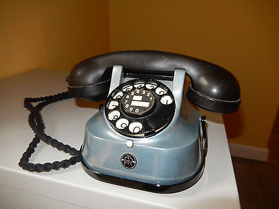 Vintage telephone leads to fun