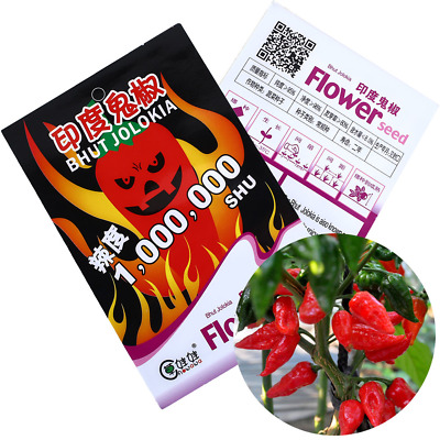 2 Ghost Pepper India Reaper Trinidad Moruga Scorpion Hot Chili Seeds Home