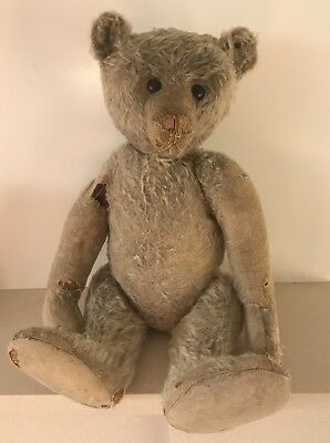 Antique Large Humpback Steiff Bear With Ear Tag Intact