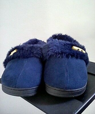 Blue Slippers Size 5