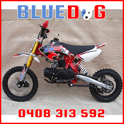 Pit Bike 125cc Many Extras 12/14 Freight INCLUDED To VIC,NSW,SA Bris Metro Red