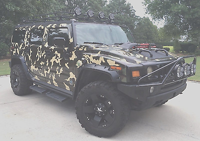 2003 Hummer H2 Custom Build 2003 Hummer H2 Painted Camo, Low Miles