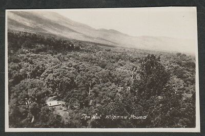 e355)      VINTAGE  SOUTH AUSTRALIA  POSTCARD:  THE HUT, WILPENA POUND