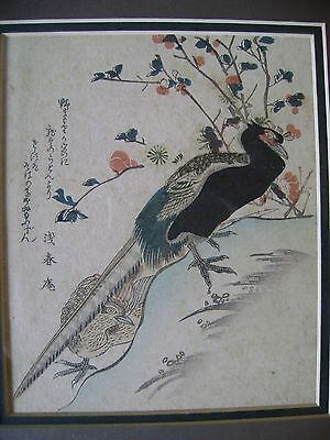 An Antique Japanese Woodblock Coloured Print Of A Pair Of Pheasants