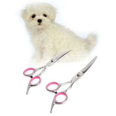 "6"" Stainless Steel Pet Gromming Curved Scissors Dog Cat Cutting Hair Scissors"