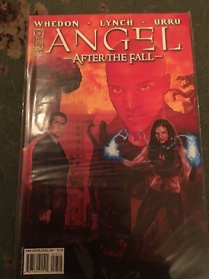 Angel After The Fall #7