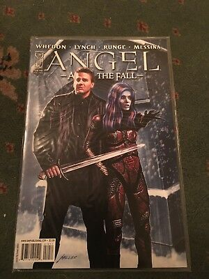 Angel After The Fall #10