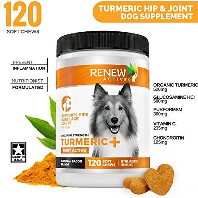Dog Joint Pain Support Supplement: Renew Actives Natural, Advanced Organic Turme