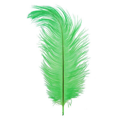 P5 12 Kinds of Color New Natural 10-12 Inch Ostrich Feathers Decorations